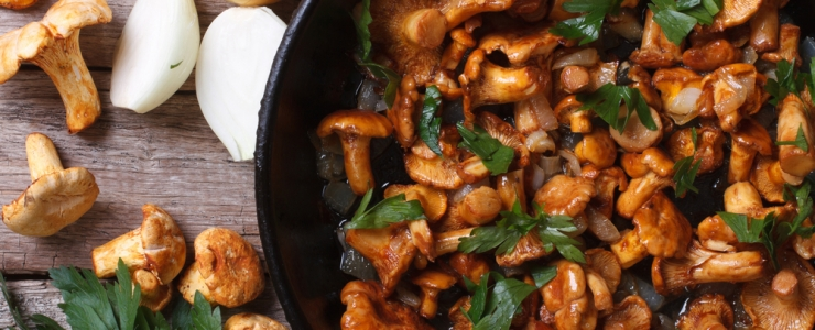 ТОП-10 блюд из грибов